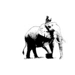 Steering the Elephant